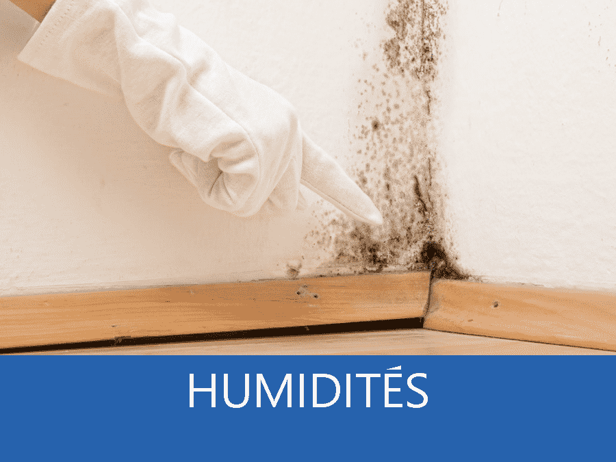 expertise humidité 91, expert humidité Evry, cause moisissure Massy, solutions humidité Essonne,